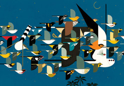 Charley Harper: Mystery of the Missing Migrants, 1000pc