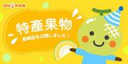 UHA Puccho Stick Candy Melon Flavor| 味覺糖 北海道夕張 蜜瓜味果肉條裝軟糖 50g 10Pcs [日本限定]