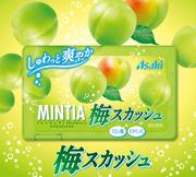 ASAHI Mintia Sugarless Mint Candy Plum Flavor | 朝日- 口腔清新梅味無糖薄荷糖 50Tablets