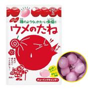 NOBEL Plum Chewy Candy 諾貝爾 酸梅子夾心脆皮軟糖 35g