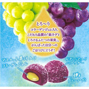 MEIJI Fruit Juice Gummy Candy Grape Flavor   明治 果實軟糖 紅提+青提味52g