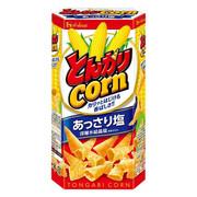 HOUSE TONGARI Corn Salt Flavor | 好侍 通加利 粟米筒 鹽味 75g
