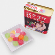 Sakuma Fruit Candy | 佐久間製菓 懷蕭鐵罐 果汁糖 115g