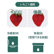 DOSHISHA +gReen Fresh Maintenance Egg 日本 蔬果保鮮蛋 1個入