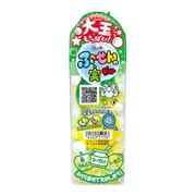 Lotte Chewing Gum Apple & Lemond 樂天 香口膠 泡泡糖 檸檬青蘋果 35g
