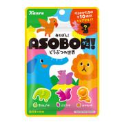 KANRO Asobo Assorted Fruit Gummy | 甘樂 動物世界 雜錦果汁味 橡皮糖 52g