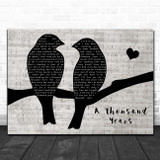 Christina Perri A Thousand Years Lovebirds Music Script Song Lyric Print