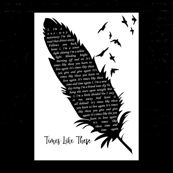 Foo Fighters Times Like These Black & White Feather & Birds Song Lyric Music Art Print