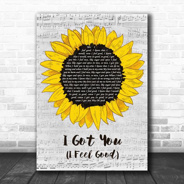 James Brown I Got You (I Feel Good) Grey Script Sunflower Decorative Gift Song Lyric Print