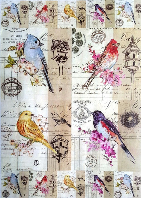 1 Sheet A4  Rice Paper for Decoupage Craft Vintage  -  Bird's Friends Birds