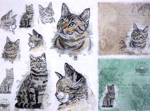 1 Sheet A4  Rice Paper for Decoupage Craft Vintage    -   Cats World