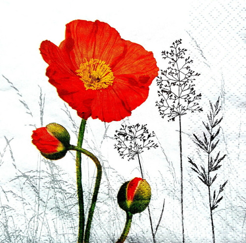 4 Single Lunch Paper Napkins - Poppies, Meadow