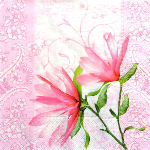4 Single Lunch Paper Napkins - Alice Flowers