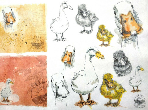 1 Sheet A4  Rice Paper for Decoupage Craft Vintage    -  Farm Duck