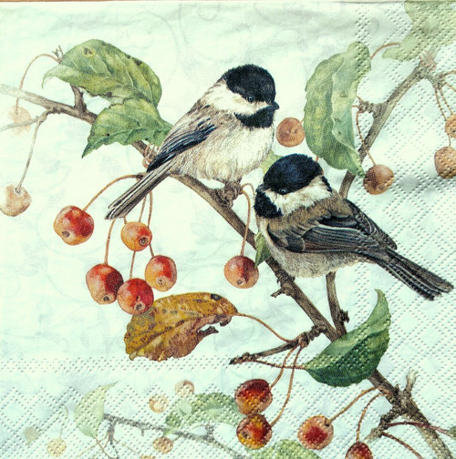 4  Vintage Paper Napkins , Lunch, Table , for Decoupage  -  Two Titmouse