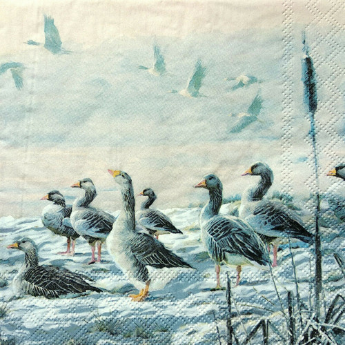 4  Vintage Paper Napkins , Lunch, Table , for Decoupage  -  Goose Family