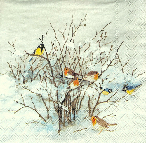 4  Vintage Paper Napkins , Lunch, Table , for Decoupage  - Birds on the Three