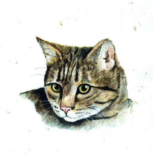 4 Lunch Paper Napkins for Decoupage Party Table Craft Vintage   - I am Cat