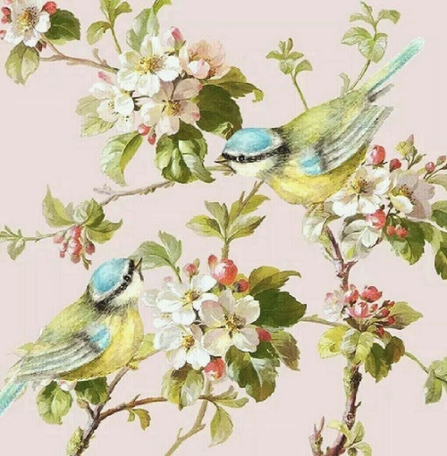 4 Single Lunch Paper Napkins for Decoupage Party Table Craft Vintage  Dream Bird