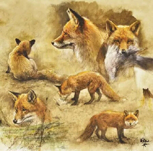 4 Lunch Paper Napkins for Decoupage Party Table Craft Vintage Portraits Of Foxes