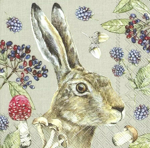 4 Lunch Paper Napkins for Decoupage Party Table Craft Vintage Country Rabbit linen