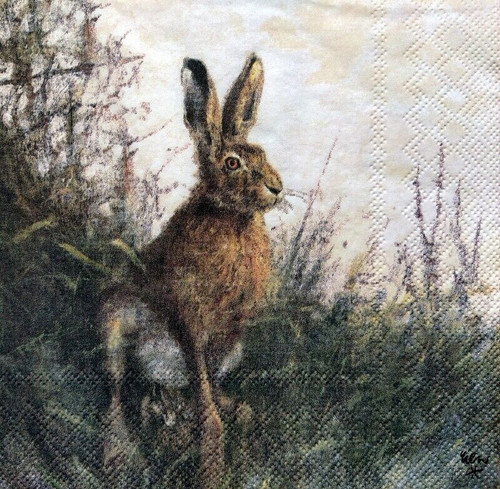 4 Lunch Paper Napkins for Decoupage Party Table Craft Vintage Portrait Of Hare