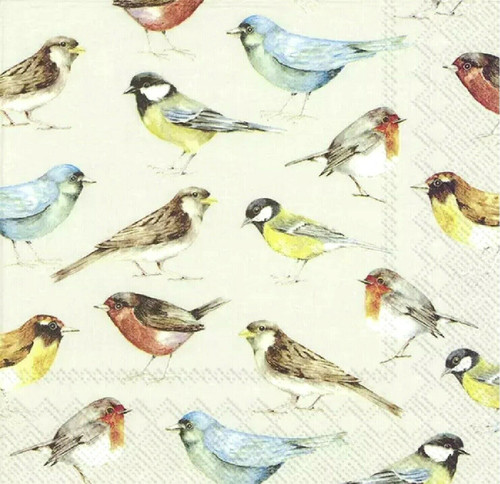 4 Lunch Paper Napkins for Decoupage Party Table Craft Vintage The Birds Cream
