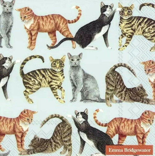 4 Lunch Paper Napkins for Decoupage Party Table Craft Vintage Cats - light blue