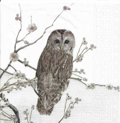 4 Lunch Paper Napkins for Decoupage Party Table Craft Vintage ,Nature is Calling, Owl