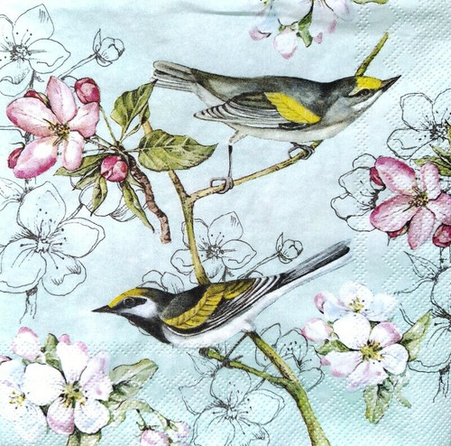 4 Lunch Paper Napkins for Decoupage Party Table Craft Vintage, Spring Birds Flo