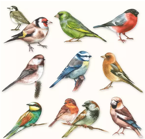 4 Lunch Paper Napkins for Decoupage Party Table Craft Vintage, Collection Of Bird