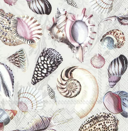 4 Lunch Paper Napkins for Decoupage Party Table Craft Vintage, Shells Of The Sea Nature