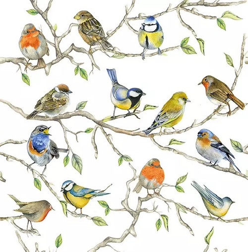 4 Lunch Paper Napkins for Decoupage Party Table Craft Vintage, Birds Meeting