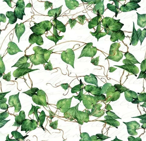 4 Lunch Paper Napkins for Decoupage, Party, Table, Craft, Green Ivy Branches