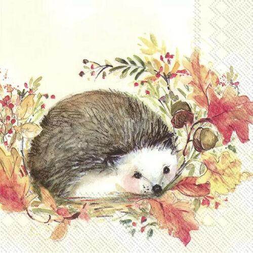 4 Lunch Paper Napkins for Decoupage Party Table Craft Vintage, Animals, Sweet Hedgehog