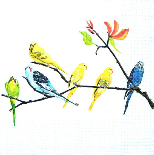 4 Lunch Paper Napkins for Decoupage Party Table Craft Vintage Parrots Periko