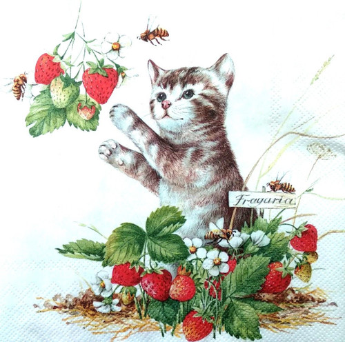 4 Single Lunch Paper Napkins for Decoupage Party Craft Vintage Strawberries Cat