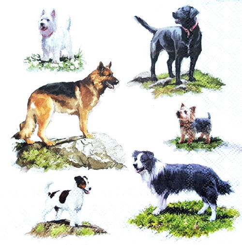 4 Lunch Paper Napkins for Decoupage Craft Vintage Napkin Dogs Show