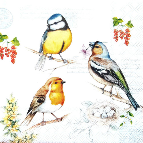 4 Lunch Paper Napkins for Decoupage Craft Vintage Napkin Friends - Birds