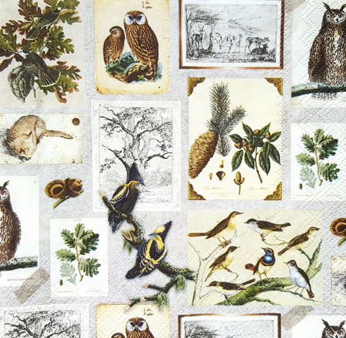 4 Lunch Paper Napkins for Decoupage - Autumn Animals Mix