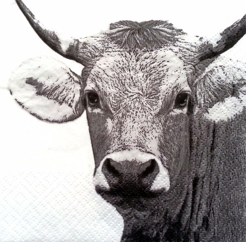 4 Lunch Paper Napkins for Decoupage  -  Sweet Cow
