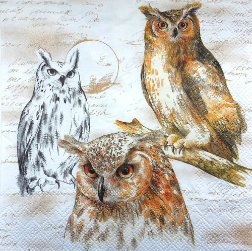 4 Single Lunch Paper Napkins for Decoupage  -    Beige Owls