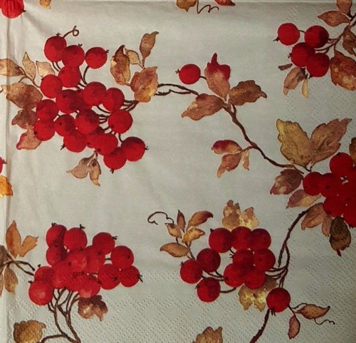 4 Vintage Paper Napkins , Lunch, Table , for Decoupage  - Autumn Fruits