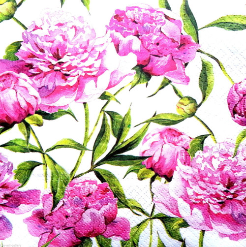 4 Vintage Paper Napkins , Lunch, Table , for Decoupage  - Pink Peony , Flowers