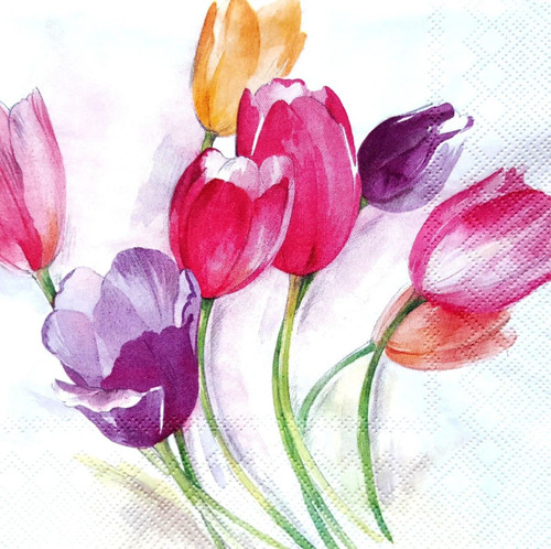 4 Lunch Paper Napkins for Decoupage  -  Magic Tulips Flowers