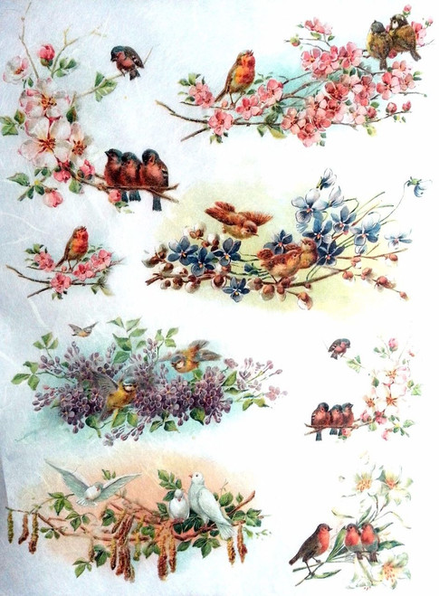 1 Sheet  of Rice Paper for Decoupage Craft Vintage  - Romantic Birds Mix