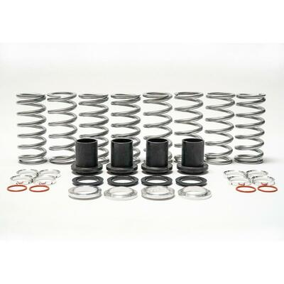 Shock Therapy Dual Rate Spring Kit RZR 900 Trail 100-1033-04