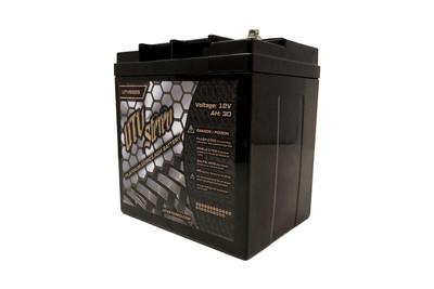 UTV Stereo Polaris RZR Platinum Series AGM Battery UTVS925-RZR-AGM