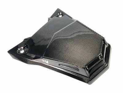 FourWerx Carbon Polaris RS1 Carbon Fiber Scooped Hood FWC-RS1-SH