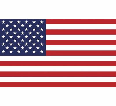 DragonFire Racing Whip Flag - Double-sided Print American Flag 522125